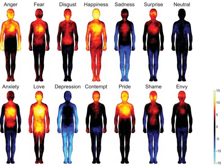 Color-coded human figures map the bodily sensations associated with particular emotions.